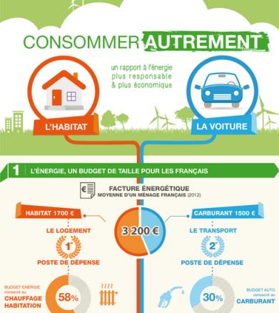 infographie Cetelem Consommer autrement